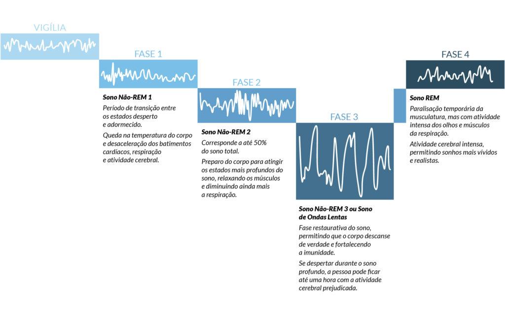 Infográfico explicando as fases do sono - Persono